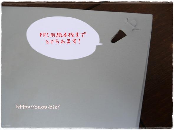 P1040594