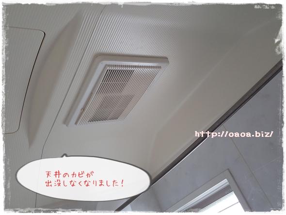 お風呂の天井のカビ対策